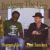 Bridging the Gap Artwork